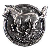Arizona Mustang Magnet